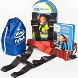 Cares Safety Harness